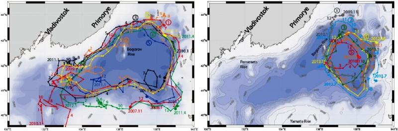 국내 연구팀이 동해(東海) 해류(海流) 순환의 비밀을 찾았다. 왼쪽 그림은 동해 북부분지의 아고플로트 이동 모습이다. 겨울이 아닌 경우 분지 전체를 반시계 방향으로 순환하는 흐름 패턴을 보인다. 오른쪽 그림은 동해 북부분지에서 아고플로트가 이동하는 현황이다. 겨울에는 동쪽에서 반시계 방향의 작은 소용돌이 패턴으로 변한다.